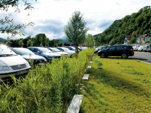 Parken en openbaar groen