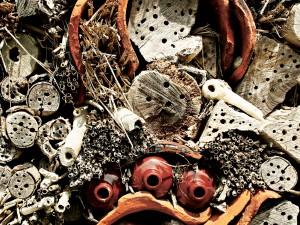 Voorzieningen voor vogels en andere fauna aan en om gebouwen