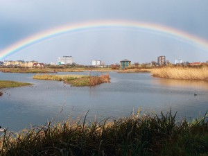 Urban wetland London - London Climate Change Partnership
